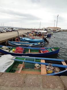 Calasetta haven